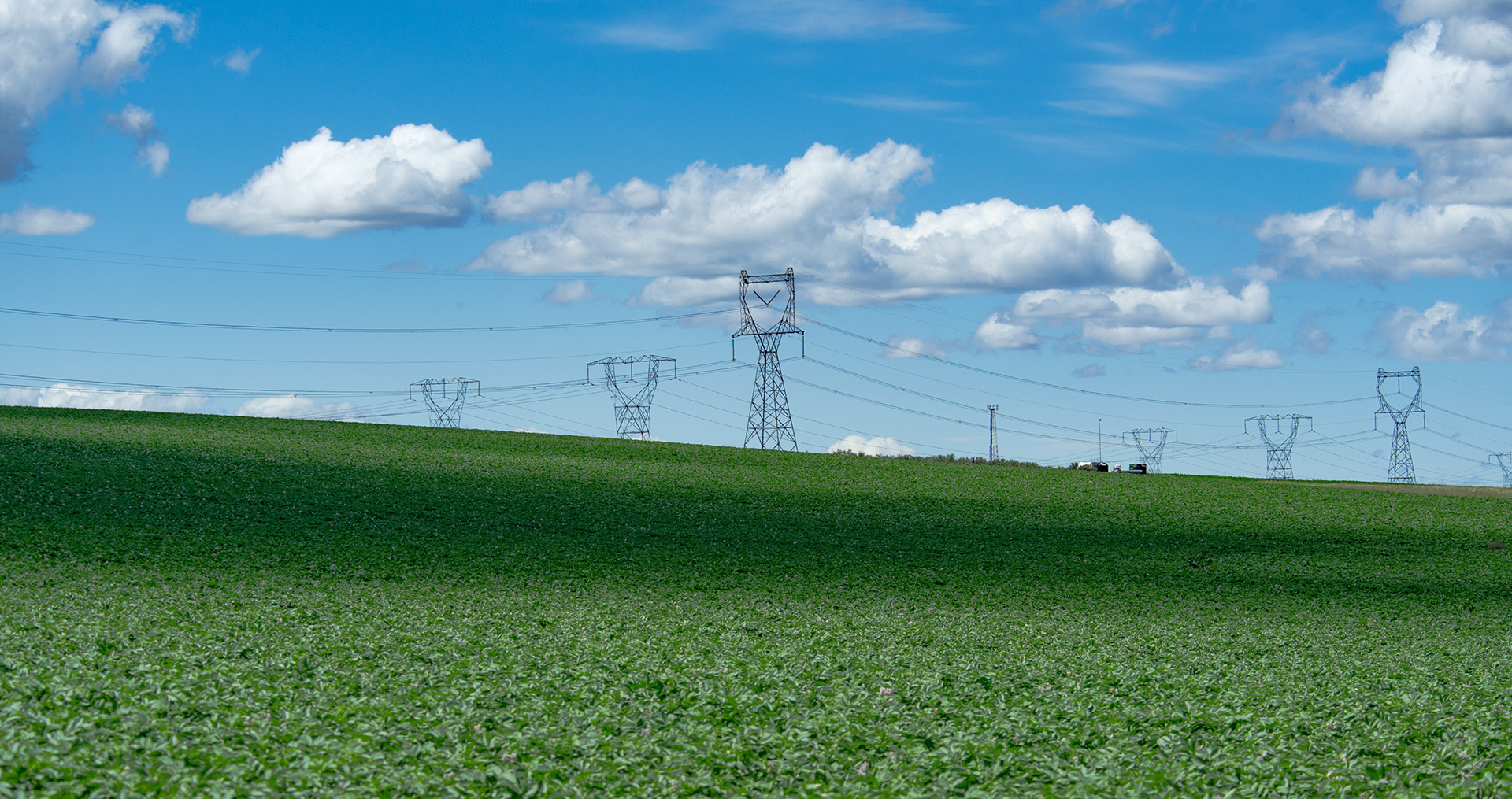transmission lines running through a field