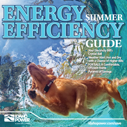 cover of summer energy efficiency guide 2017