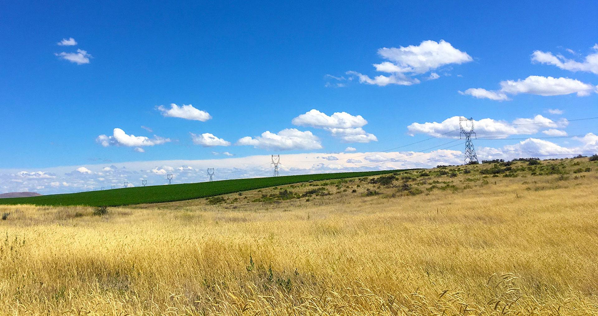 Photo of transmission lines across a landscape