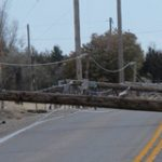 Fallen power lines on the road