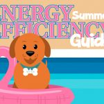 Wattson the dog in a pool for the energy efficiency guide cover